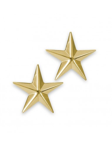 Brigadier General Insignia Stars Pin Gold
